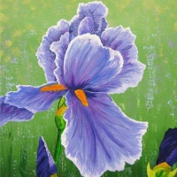 Kathy Alderman - Purple Beauty Iris -Acrylic - 24 x 30