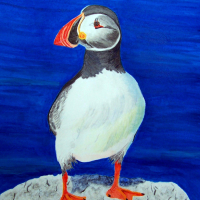 Sharon Barnes - Atlantic Puffin - Acrylic