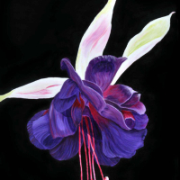 Sharon Barnes - Floral Majesty - Acrylic